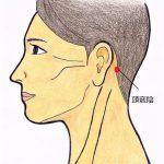 【頭竅陰(あたまきょういん)】頭と目の痛み、耳の疾患に良く効きます